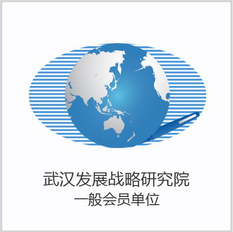 武汉发展战略研究院.png